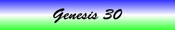 Genesis Chapter 30