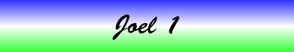 Joel Chapter 1