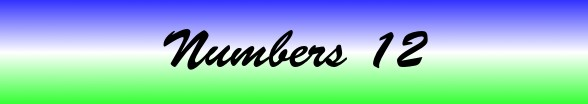 Numbers Chapter 12