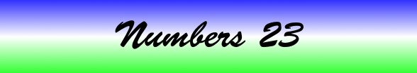 Numbers Chapter 23