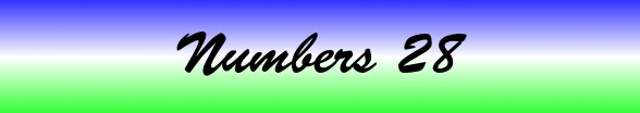 Numbers Chapter 28