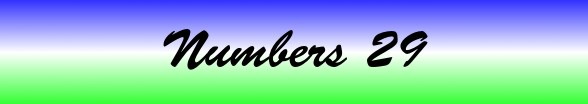 Numbers Chapter 29