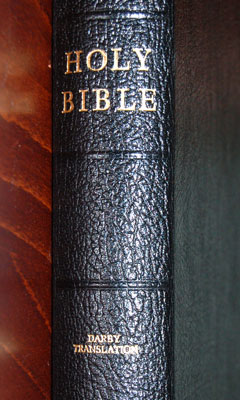 holy bible - darby translation